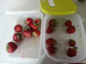 strawberryend