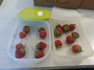 strawberrystart