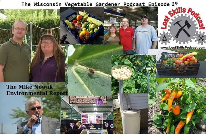 podcast29