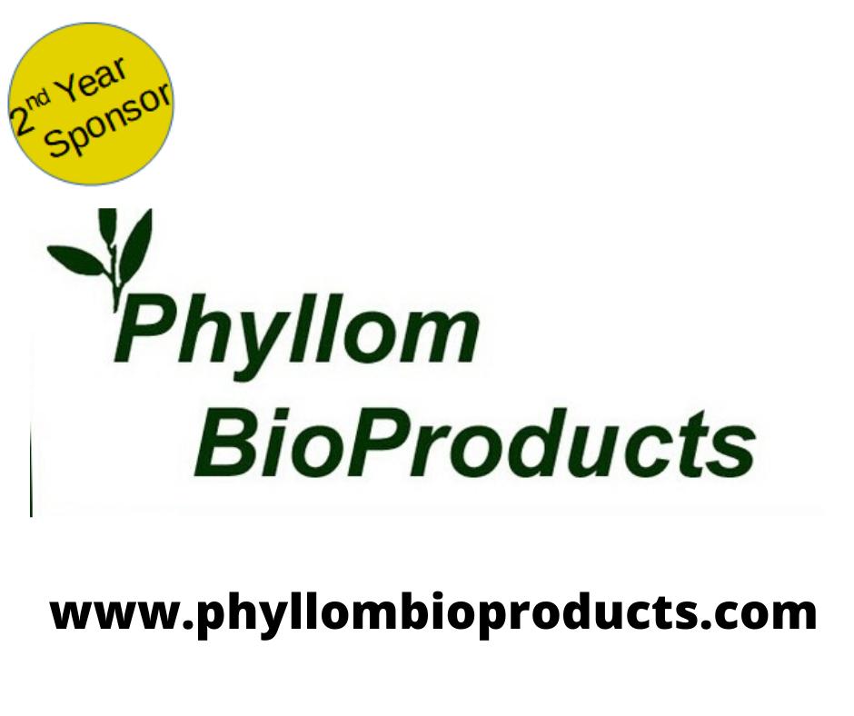 Phyllom